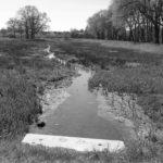 Biotope in Godshorn